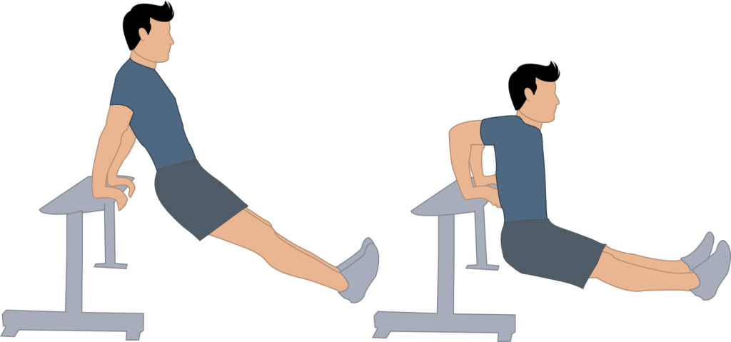 dips exercice