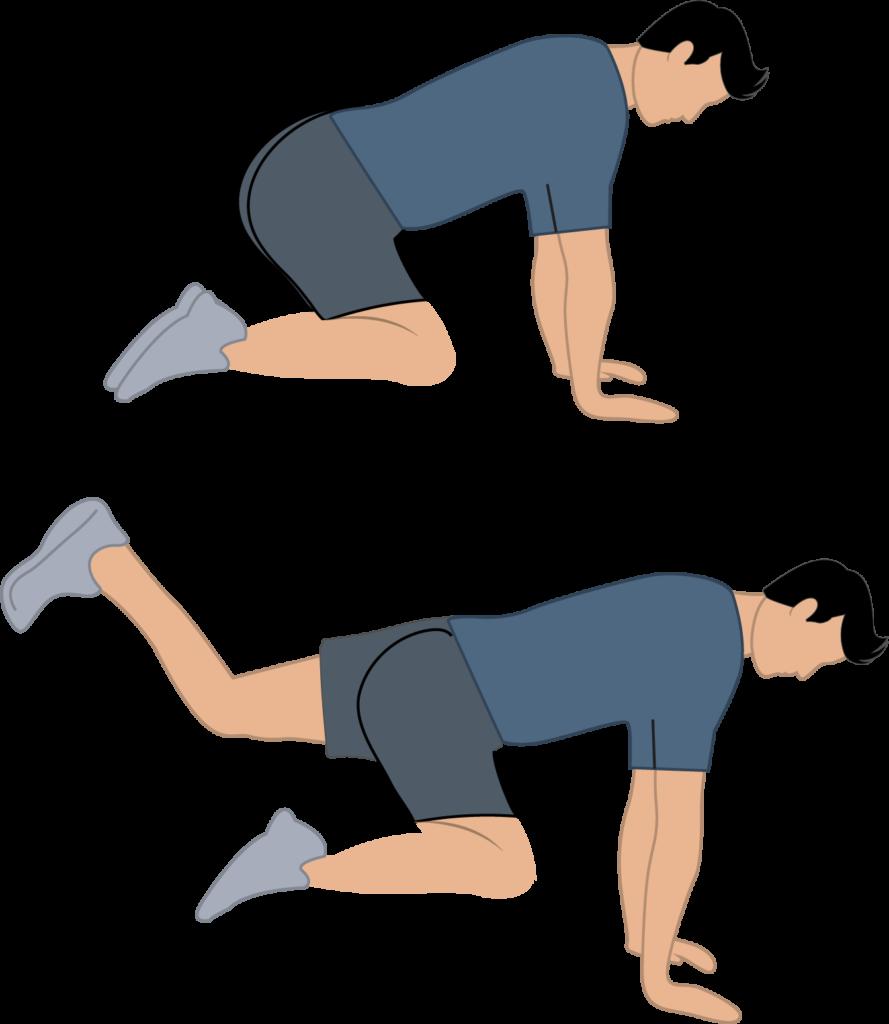 donkey-kick-fessiers-exercice