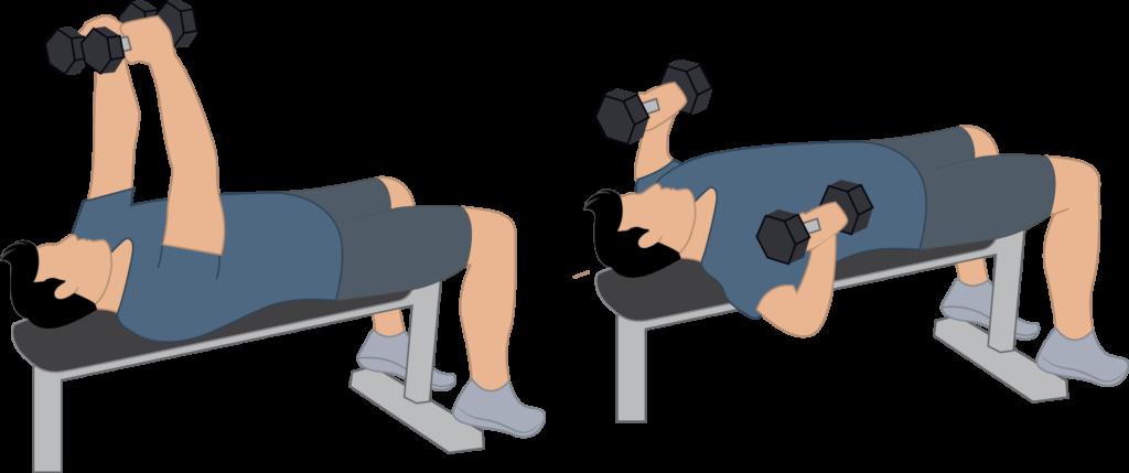 Exercice écarté haltère