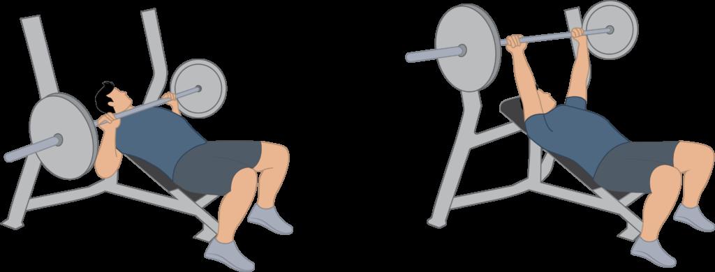 Exercice du développé couché incliné