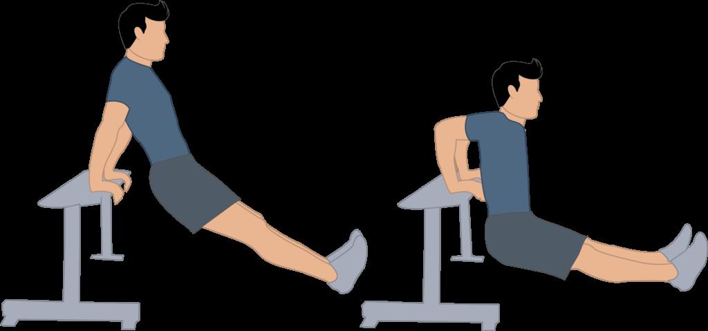 dips-exercice