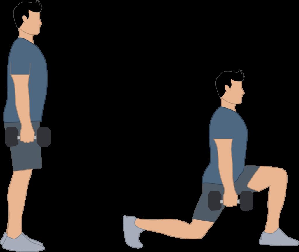 Exercice des fentes