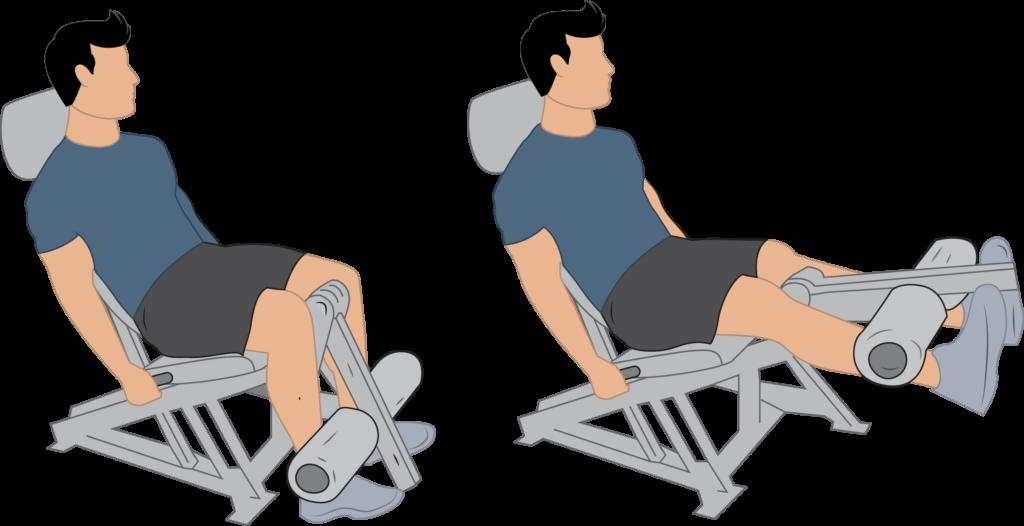 Exercice de l'extension du quadriceps