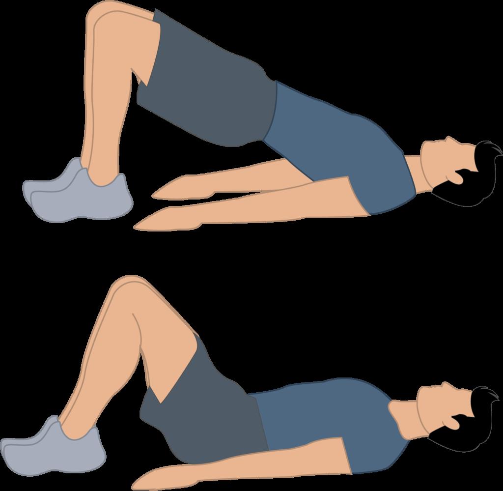 Exercice du hip thrusts