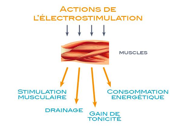 Fonction de l'életrostimulation sur le muscle