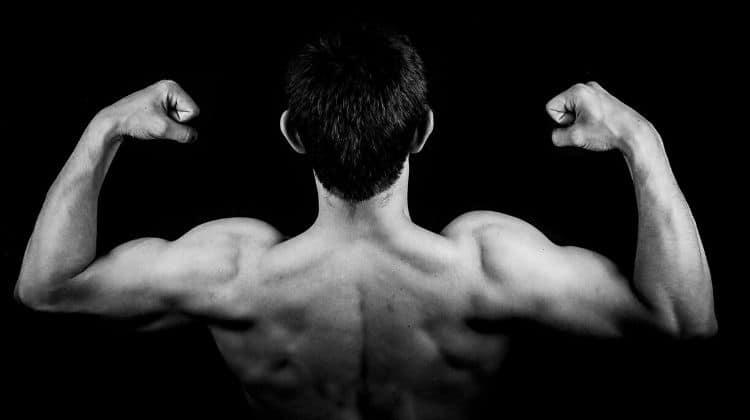 Catabolisme musculaire : définition, explications et solutions