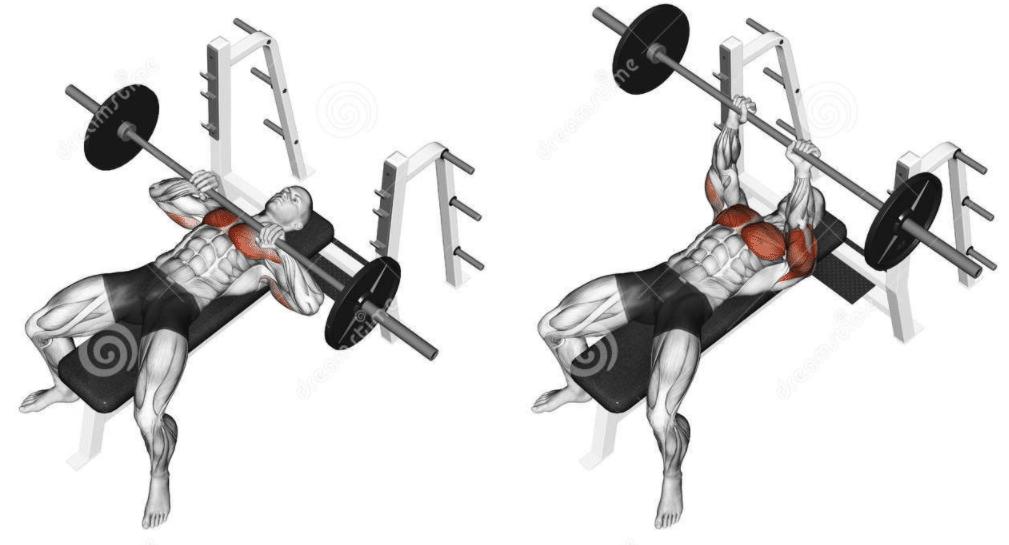 Le développé-couché serré permet de muscler davantage le haut des pectoraux