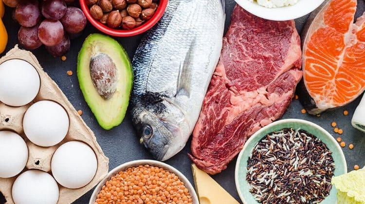 Meilleures sources de protéines dans l'alimentation