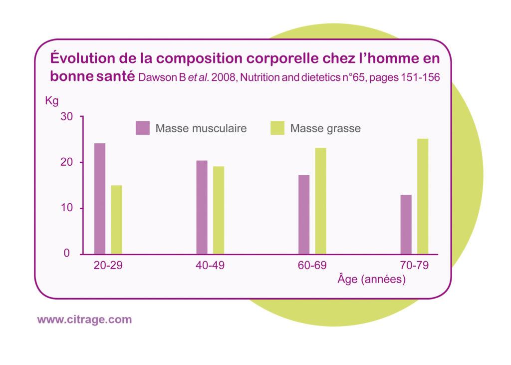 Evolution de la masse musculaire en fonction du genre et de l'âge