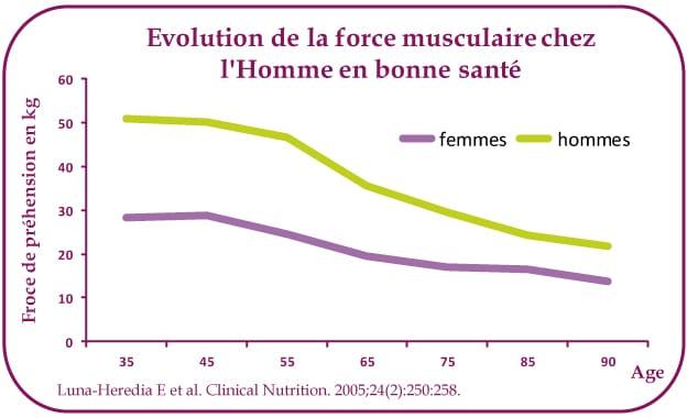 Masse musculaire Homme/Femme en fonction de l'âge