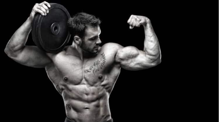 Quel pourcentage de masse musculaire devez-vous idéalement atteindre ?