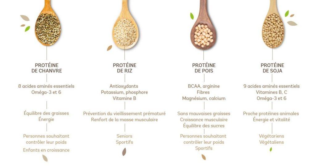 Protéines-végétales