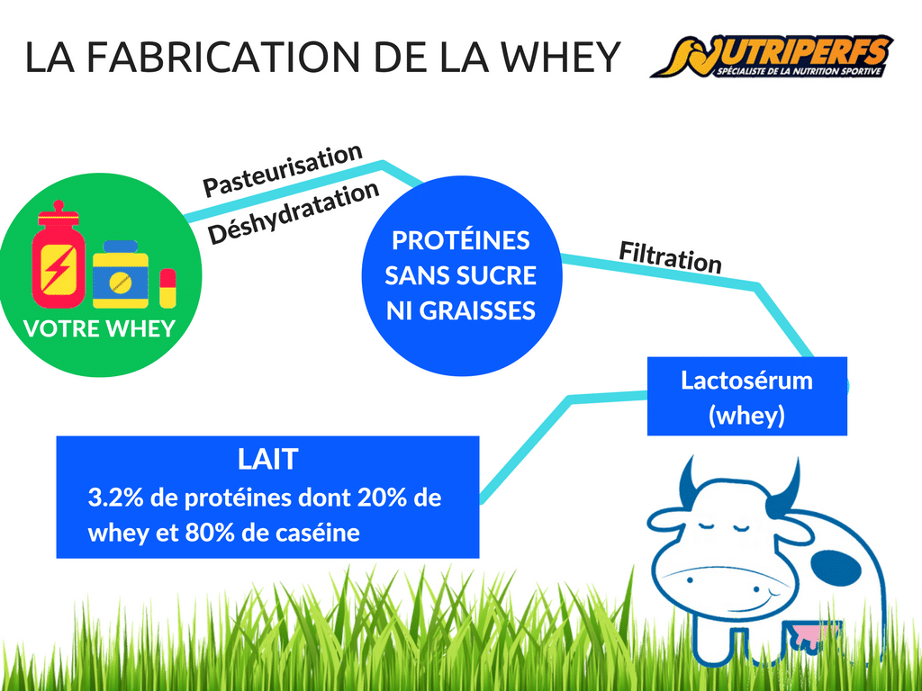 Fabrication de la whey