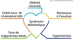 qu'est ce que l'obésité métabolique