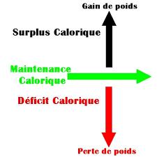surplus calorique