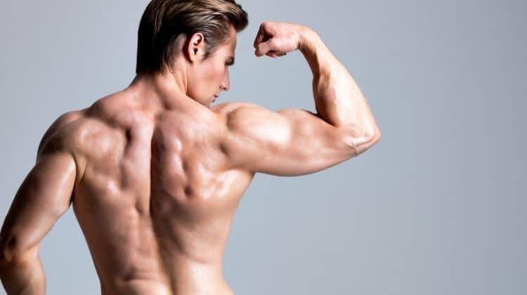 La musculation du dos sans matériel : 5 meilleurs exercices