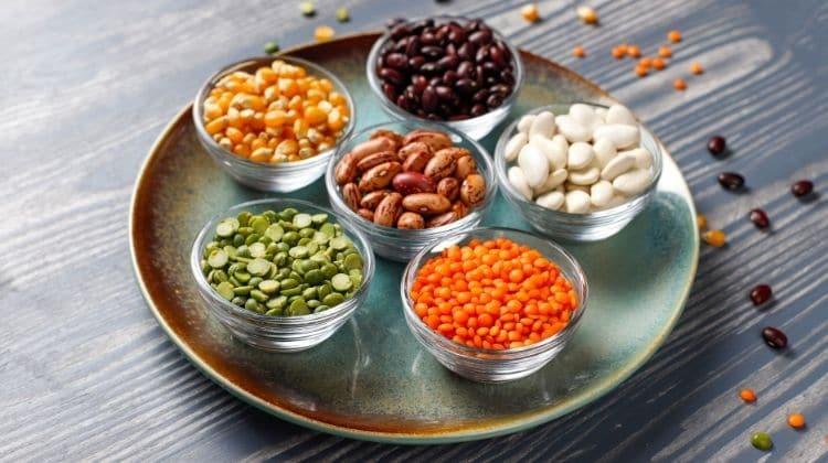 9 légumineuses avec les protéines les plus saines pour le corps