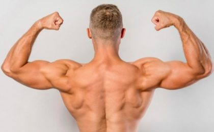 seance dos biceps