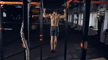 muscles sollicités par les tractions