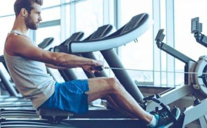 muscle-sollicité-rameur