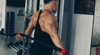 musculation arrière épaule
